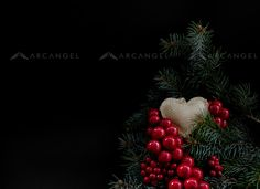 Arcangel - #photography #Christmas #heart #love #berries #nature #pine #tree #Xmas #plants #canoneos5dmarkIII #RightsManaged #arcangelimages