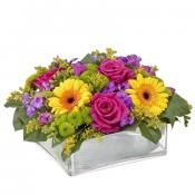 Bright flowers Arrangement in our online Belgium floral shop.Browse our online catalog for flowers in Belgium and deliver whenever you want.