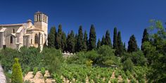 Fontès - AOC Languedoc