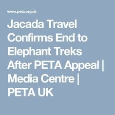 Jacada Travel Confirms End to Elephant Treks After PETA Appeal | Media Centre | PETA UK