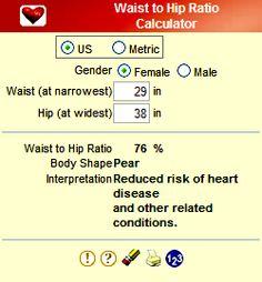 ideal waist to hip ratio calculator | SunSigns.Org