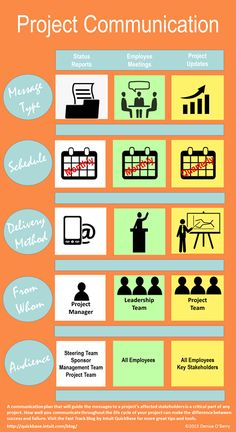 Project Communication Infographic #pmp