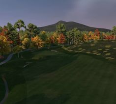 Virtual Golf Environments