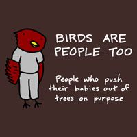 Birds : Im ready to push my Elizabeth bird out of the tree :)