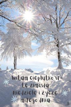 Arthur Rubinstein, Vizsla, Love Life, Laughter, Love You, Outdoor, Words, Outdoors, Te Amo