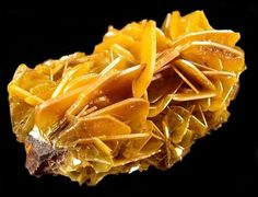 Cluster of Wulfenite Crystals Glove Mine Amado, Arizona