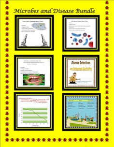 This Infectious Disease Bundle is all the infectious disease lessons available at my store provided as one download. The lessons included are: the Cell Theory, The Germ Theory, microbes that cause disease. the transmission and treatment of infectious disease, one internet disease detective activity, one exponential bacteria growth lab, one food poisoning simulation lab   3 quizzes a forty-five multiple choice end of unit test, and 14 vocabulary cards.