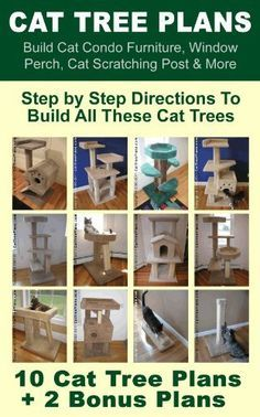 Cat Tree Plans: Build Cat Condo Furniture, Window Perch, Cat Scratching Post & More by Brian Johnson, http://www.amazon.com/dp/B00802JDPS/ref=cm_sw_r_pi_dp_G9gmsb1K2GQXY