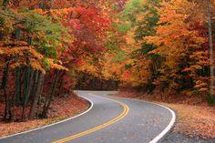 fall-colors.jpg (JPEG Image, 849×565 pixels)
