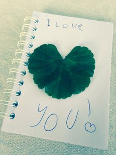 Leaf art I heart you love by Grace x
