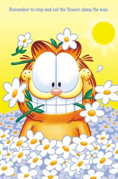 "Happy birthday to the original ""Grumpy Cat""! <3"
