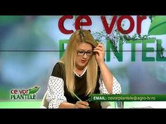 ce vor plantele cristina ghibu 2019 08 18 partea2 240 - YouTube Science And Technology, 18th, Youtube, Youtube Movies