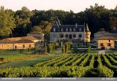 Chateau Olivier I Grand Crû classé de Graves - Pessac Leognan   Photo©CIVB-Francois Ducasse