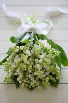 lily of the valley(add some sunflowers and it would be perfect)