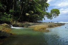 Parque Nacional Corcovado, Costa Rica...