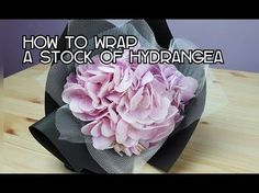 HOW TO WRAP A STOCK OF HYDRANGEA - YouTube