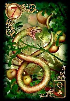 Saiba e aprenda mais sobre as combinações das cartas do Baralho Cigano Lenormand e aprofunde seus conhecimentos na carta Cobra ou Serpente.