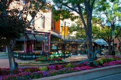 Old Town Fort Collins, CO miss this place...