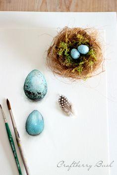 Craftberry Bush: Watercolor Nest - Spring 2014 collection