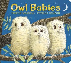 Buy Owl Babies by Martin Waddell, Patrick Benson and Read this Book on Kobo's Free Apps. Discover Kobo's Vast Collection of Ebooks and Audiobooks Today - Over 4 Million Titles! Owl Babies Book, Board Books For Babies, Baby Owls, Baby Animals, Third Baby, Preschool Books, Toddler Preschool, Got Books, Bedtime Stories