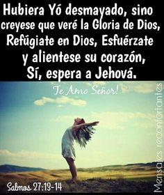 13 Hubiera yo desmayado, si no creyese que veré la bondad de Jehová En la tierra de los vivientes.  14 Aguarda a Jehová; Esfuérzate, y aliéntese tu corazón; Sí, espera a Jehová. Salmos 27:13-14 Te Amo Mi Amado Señor!