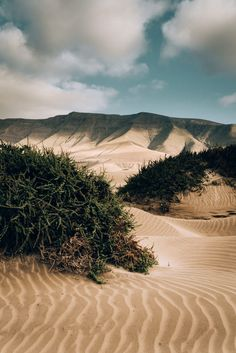 Lanzarote — Îles Canaries — Black and Wood Tenerife, Canary Islands Fuerteventura, Places To Travel, Places To Go, Station Balnéaire, Mountain Photos, Outside World, Canario, Island Beach