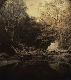 Joshua Yeldham, Fertility Song - Smith's Creek, 2014