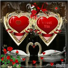 picmix.com_3185792.gif (400×400)