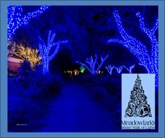 If any of you locals have the time to do this--this is the most fun holiday outing we have done here. It's absolutely wonderful... you can even roast marshmallows at the end of the walk. 15$ for Meadowlark's Winter Walk of Lights Weekday Adult + Child Ticket - THRU DEC. 13TH - Vienna (48% Off)