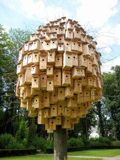 Bird Houses By Bob Verschueren
