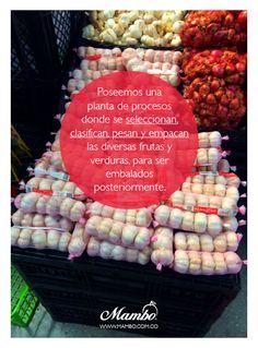 Empacados Mambo. Frutas y verduras de Cartagena de Indias. www.mambo.com.co