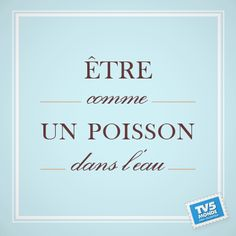 To feel at ease in a situation French Phrases, French Words, French Quotes, French Teacher, Teaching French, Expression Imagée, Communication Orale, French Posters, Ontario Curriculum