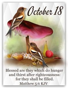 Daily Scripture, Scripture Verses, Scriptures, October Calender, Calendar, Matthew Chapter 5, King James Bible Verses, Days Of The Year, 1 Year