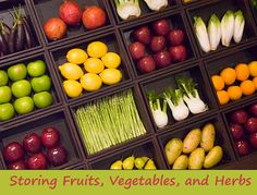 Storing Fruits, Vegetables, and Herbs