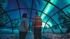 Snow Igloos in Finland . . . watch the Northern Lights from your bed. AMAZING   http://www.kakslauttanen.fi/en/accommodation/#glass-igloos