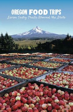 Oregon food trips : seven tasty trails around the state, by Travel Oregon