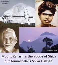 Autobiography Of A Yogi, Advaita Vedanta, Brahma Kumaris, Hindu Statues, Ramana Maharshi, Heart Knot, Great Words, Lord Shiva, Hinduism