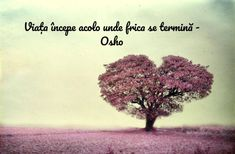 Osho, Love You, Relationship, Words, Quotes, Cale, Motivational, Inspirational, Journal