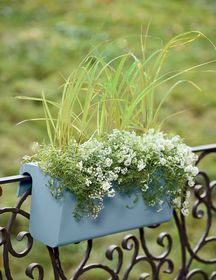 How To Create Sensational Pots And Planters   Container Gardening. Self  Watering Balcony Railing ...