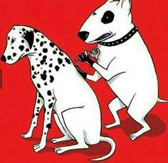 Dalmatian, oww jajajaja