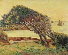 Chêne vert, matin 1913