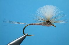 Rene Harrop's CDC Biot Parachute...a great Beatis immitation