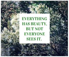 Everything has beauty, but not everyone sees it. - #quote #Facebookquote