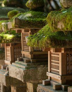 Kasuga Shirine #japan #nara