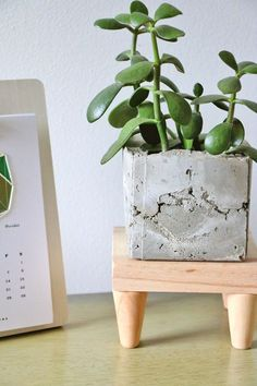 Mid century modern plant stand... Ah it's tiny and cute~
