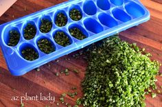Enjoy the flavor of summer by learning how to preserve fresh herbs by freezing them into ice cubes.