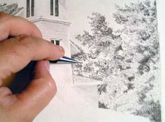 diane wright drawing how to draw trees with pencil