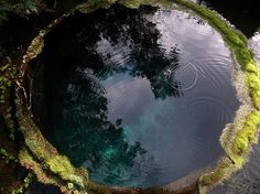Makes me think of the hermit's pool in The Horse and His Boy ^-^