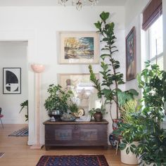 Retailer of Curated & Vintage Stylish Home Decor