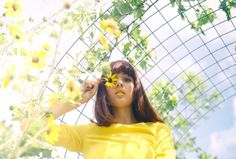 I am vertical / 35mm film photography by Anamercedesphoto on Etsy